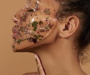 aesthetic, flowers, and luxury image