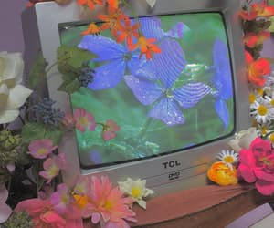 flowers, retro, and tv image