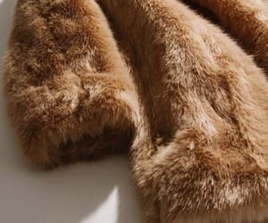 fur and fashion image