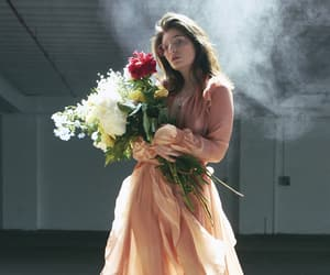 ️lorde, flowers, and aesthetic image