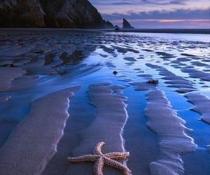 sea, beach, and nature image