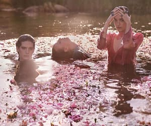 flower petals, aesthetic pictures, and gucci image