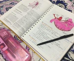 anatomia, anatomy, and books image