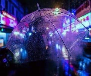 rain, neon, and purple image