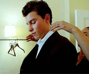 gif and shawn mendes image