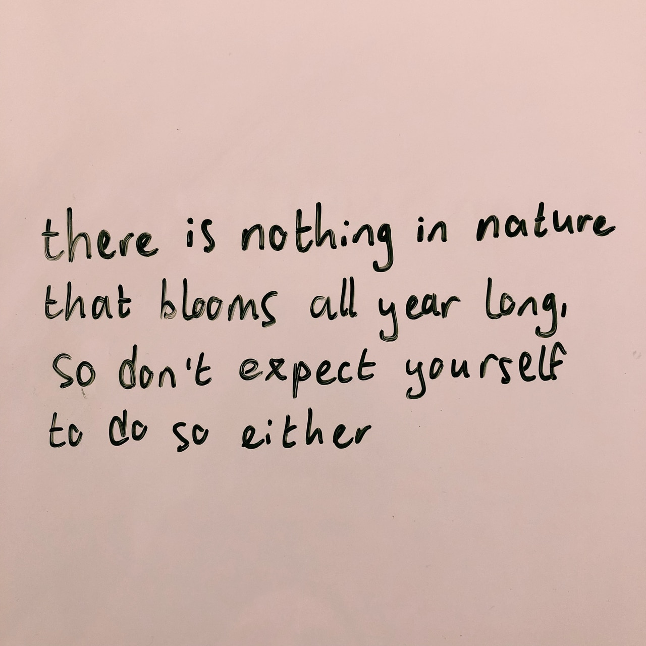 bloom, quotes, and nature image