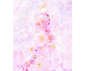blossom, greeting cards, and watercolors image