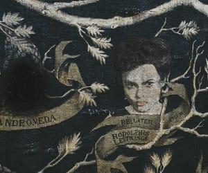 slytherin, bellatrix lestrange, and harry potter image