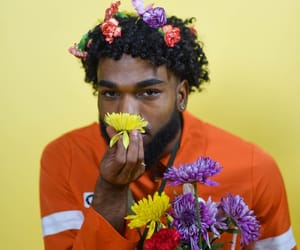 curly hair, fine, and flowers image