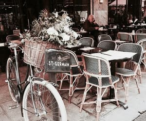 bycicle, nature, and vintage image