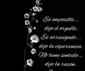 vida, experiencia, and imposible image