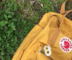 yellow, bag, and tumblr image