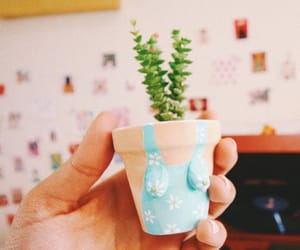 bedroom, flowerpot, and cute image