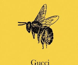 gucci, yellow, and bee image