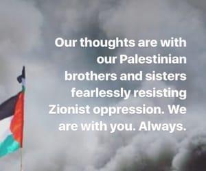 palestine, oppression, and zionist image