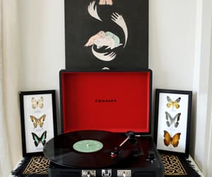 butterfly, record, and hirodrewsykes image