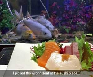 fish, funny, and bon appetite image