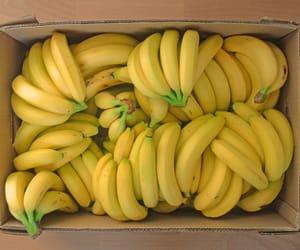 banana, fruit, and yellow image