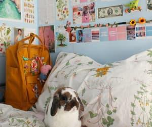 bunny, aesthetic, and animal image
