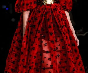 fashion, Alexander McQueen, and red image