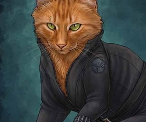 Animales, viuda negra, and Avengers image