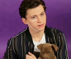 icon, layout, and tom holland image