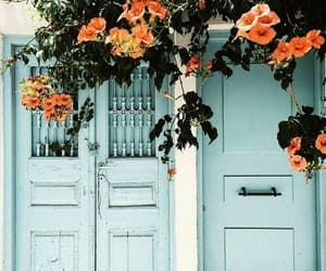 flowers, blue, and door image