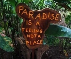 paradise, tropical, and green image
