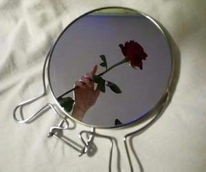 rose, tumblr, and grunge image