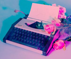 pink, rose, and the 1975 image