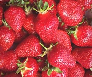 berries, erdbeere, and field image