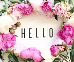flowers, girly, and hello image