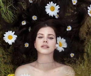 lana del rey, flowers, and young image