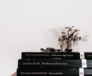 aesthetic, books, and tumblr image