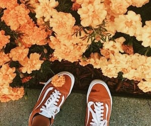 flowers, yellow, and vans image