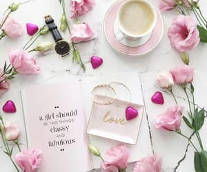 classy, fabulous, and pink roses image