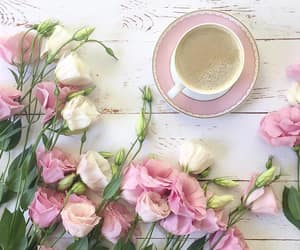 coffee, roses, and white image
