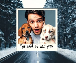 wallpapers and liam payne image