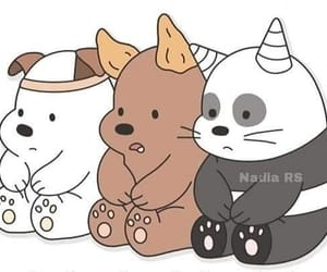 animal, baby, and bear image