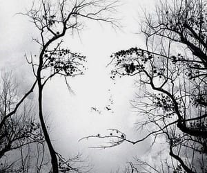 tree, face, and nature image