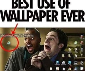 funny, lol, and wallpaper image