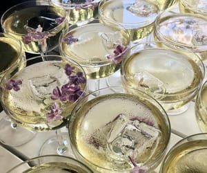 aesthetic, champagne, and Cocktails image
