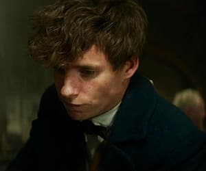 eddie redmayne, where to find them, and gif image