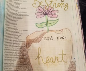 bible, flower, and strength image