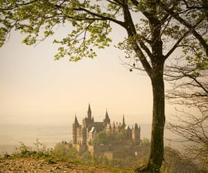 castles, forest, and hill image