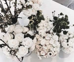 beauty, black and white, and floral image