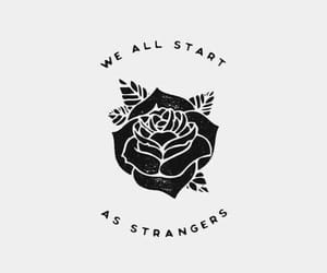 rose and strangers image