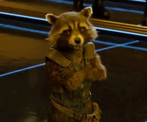gif, Marvel, and rocket image