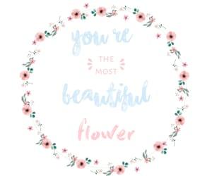 beautiful, flowers, and motivational image