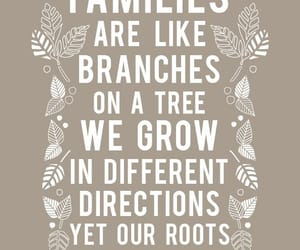 family, poems, and roots image